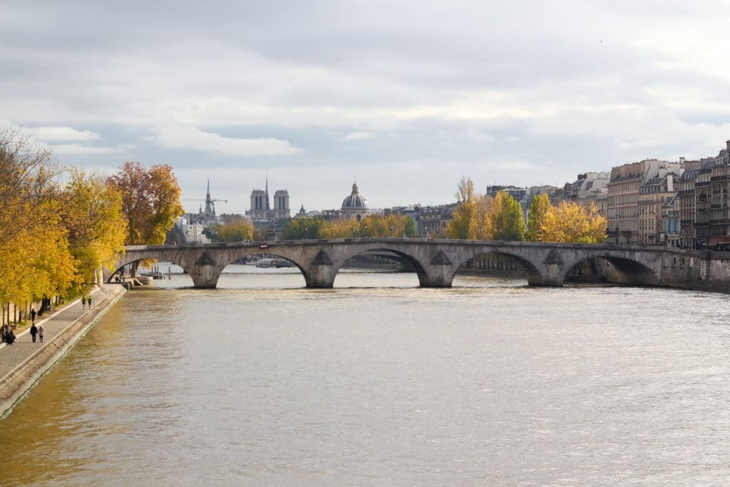 view of Seine River in Pairs