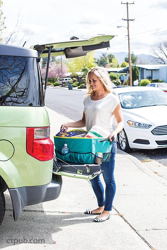 On the Go Bags Moms Minivan Organizer