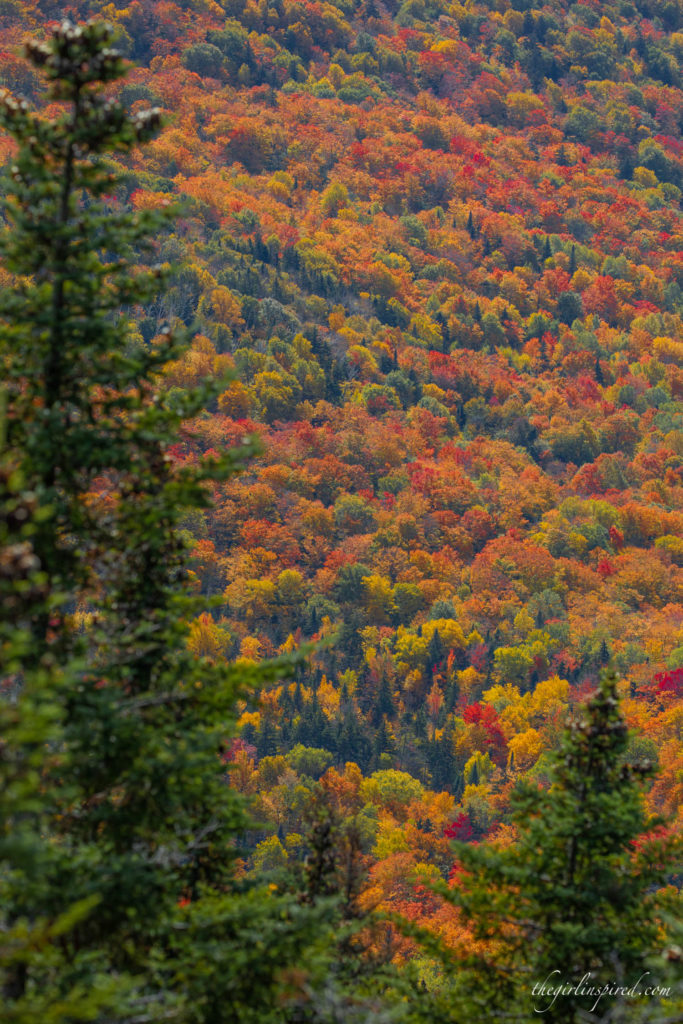 Fall Foliage Vermont Burke Mountain
