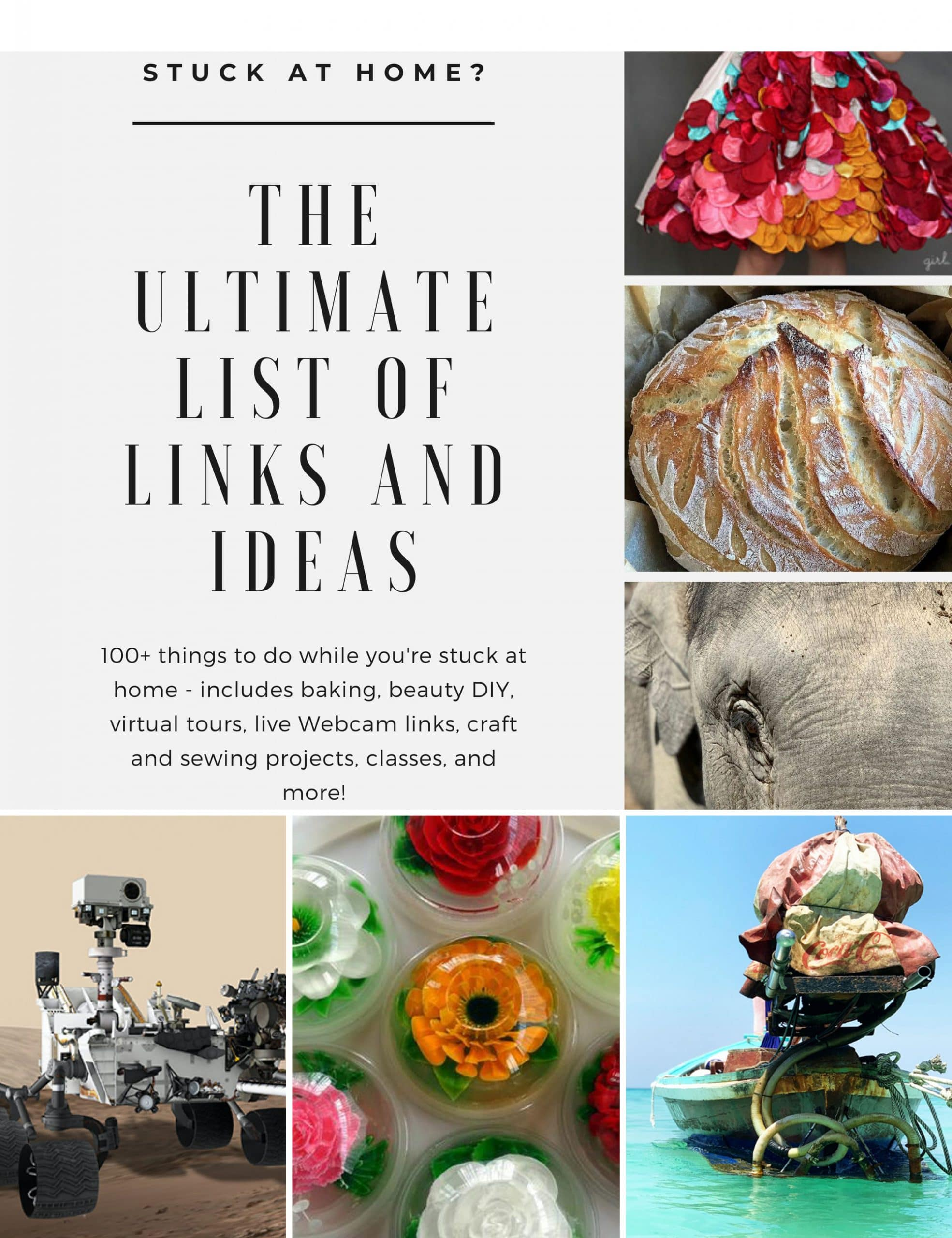 photo collage with bright multi-colored dress, bread loaf, elephant face, boat on water, gelatin flowers, and MARS robot with text