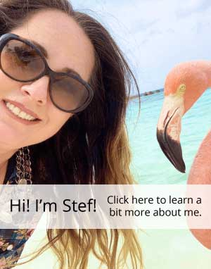 selfie of Stef and flamingo in front of turquoise water with text overlay