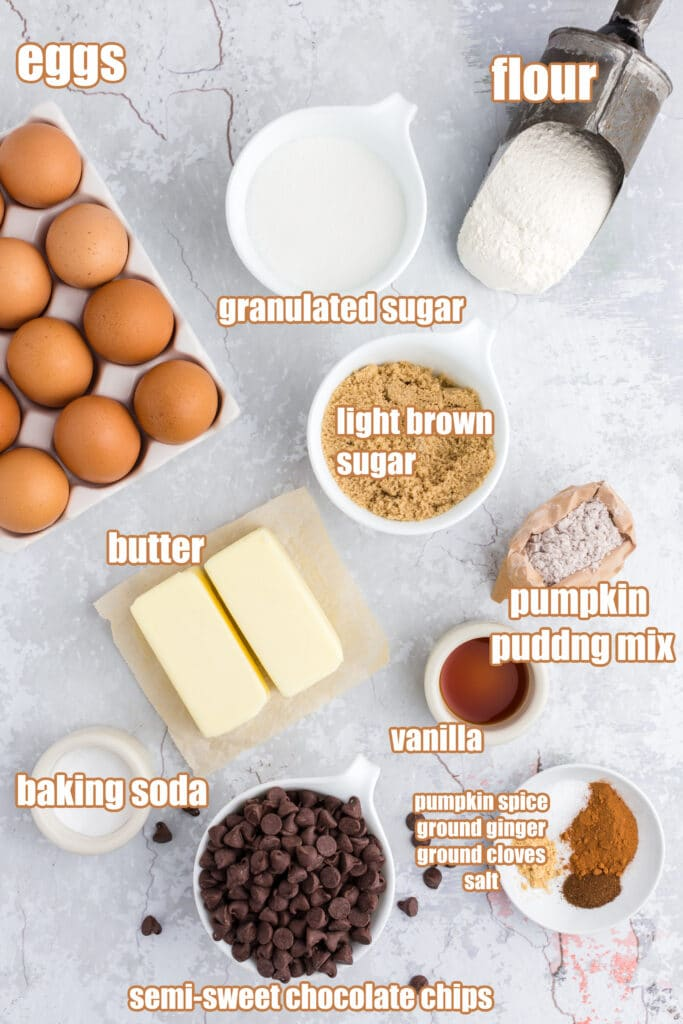 ingredients with labels for pumpkin chocolate chip cookies