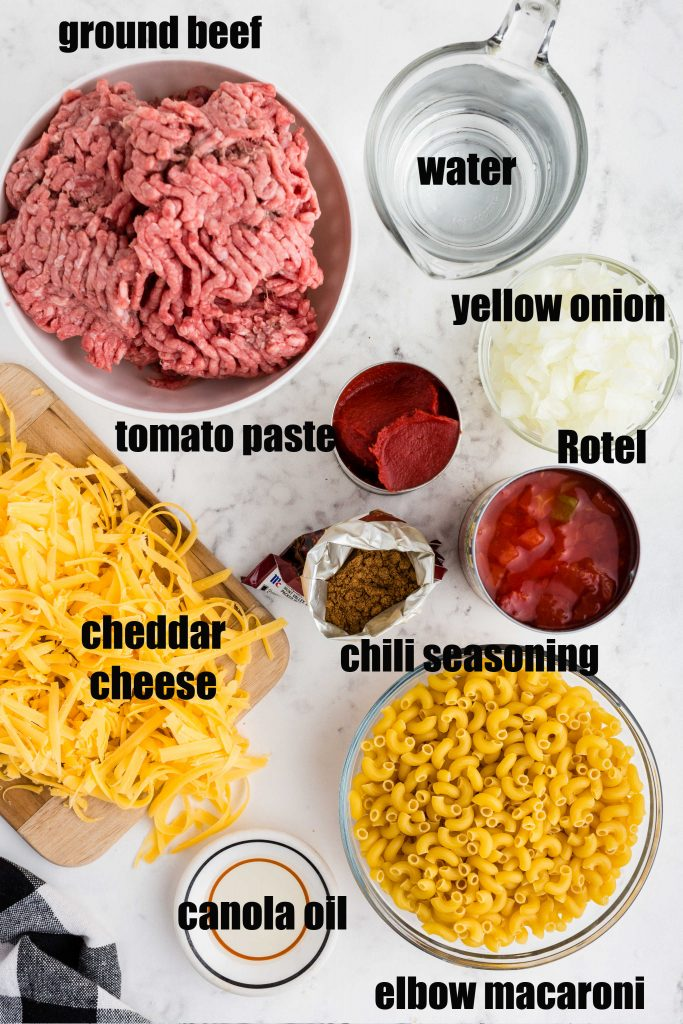 separate ingredients to make Chili Mac - ground beef, macaroni, grated cheese, diced onions, tomatoes, water, seasoning