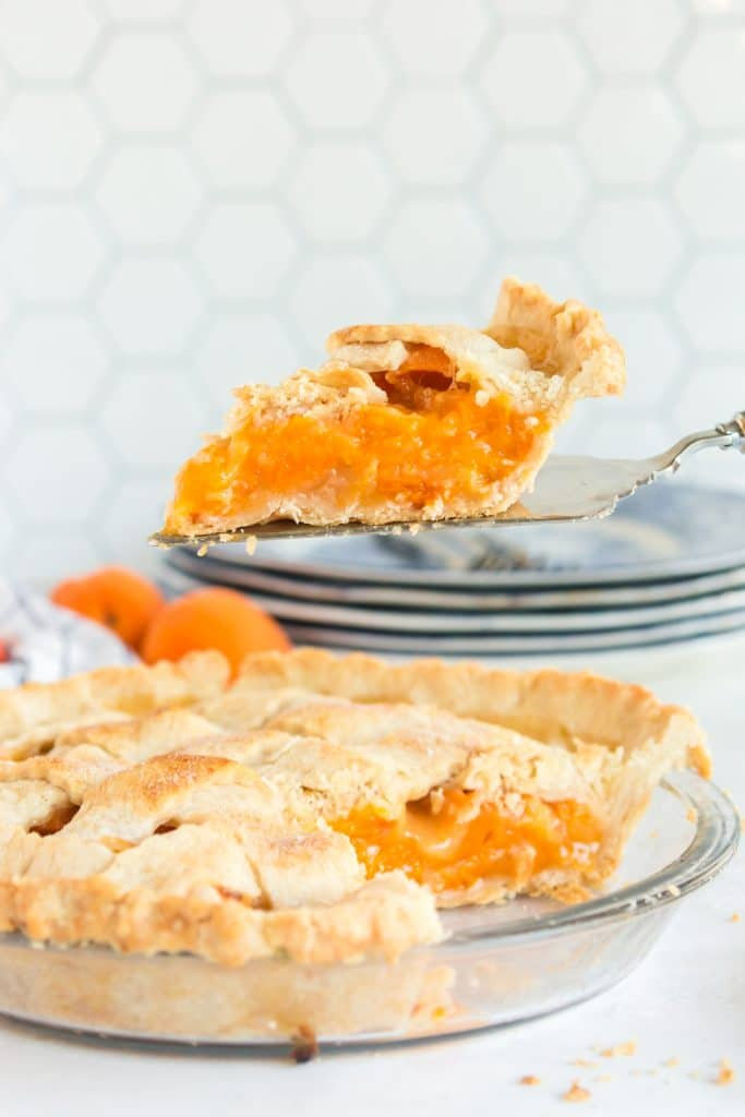 Slice of apricot pie on pie server with apricot pie below